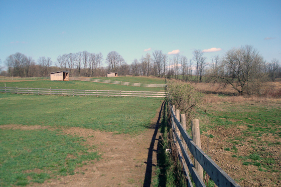 Paddocks and fields