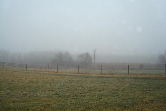 Morning mist across the fields