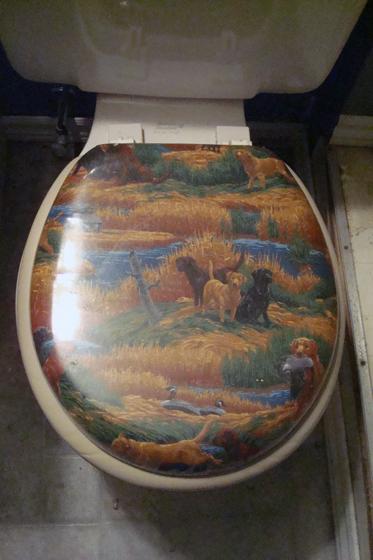Cushy toilet seat