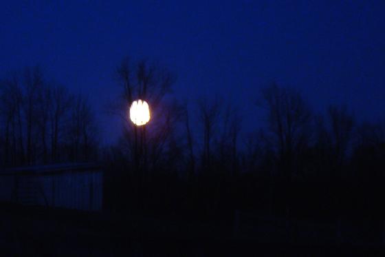 A golden moon rising over the fields