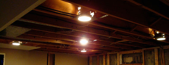 Five potlights