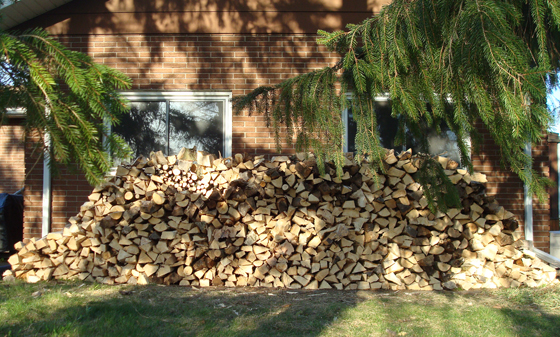 Our new wood pile