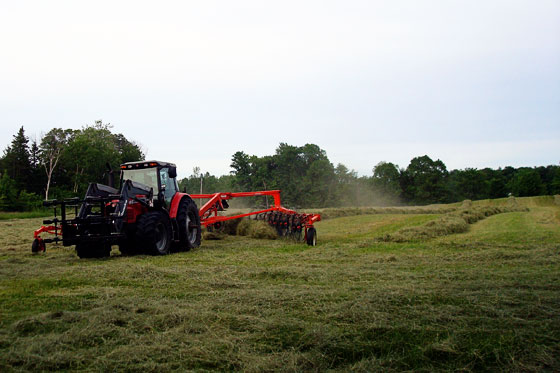 Mounding the hay