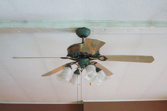 Green and faux wood ceiling fan
