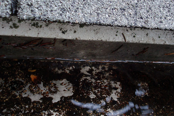 Rain falling into eaves trough
