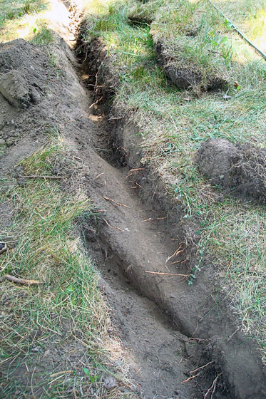 Large root in a trench