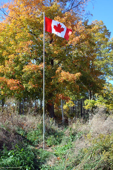 Canadian flag on a flag pole