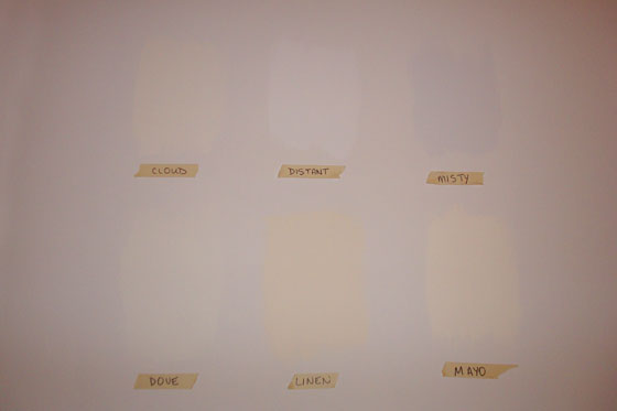 Off white paint samples