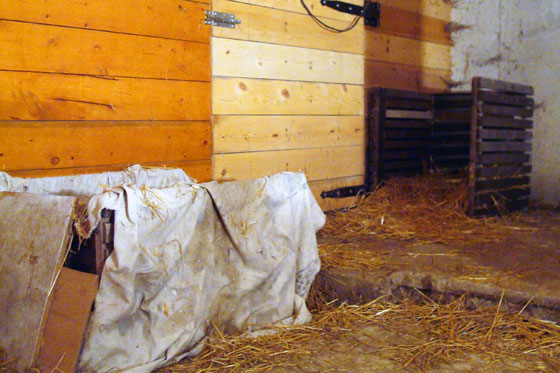 Cat beds in a barn