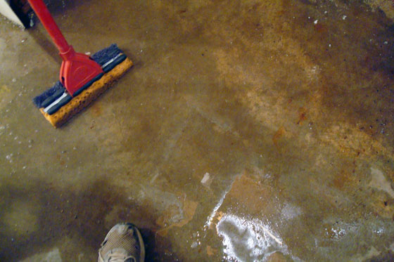 Mopping up a puddle of water