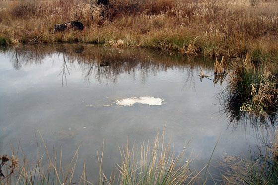 Meltin ice on a pond