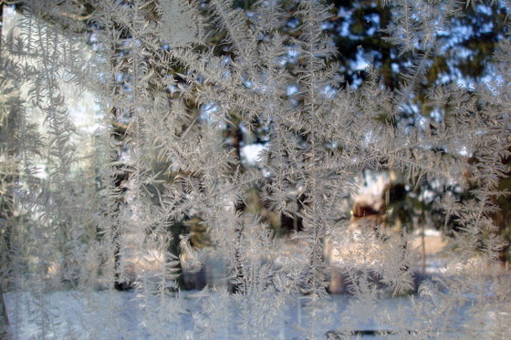 Looking through a frosted window pane