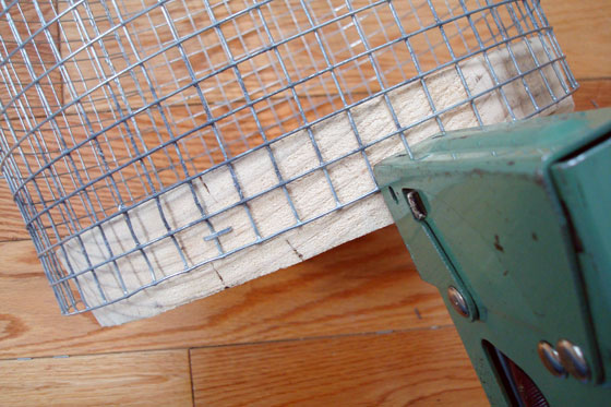 Stapling wire mesh to a wooden base