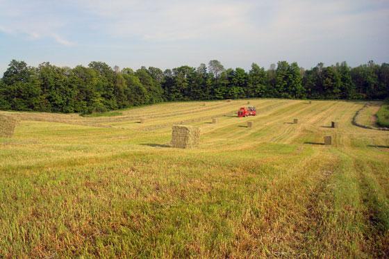 Tractors baling hay