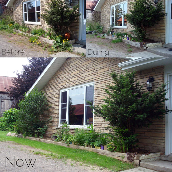 Evolution of the front garden