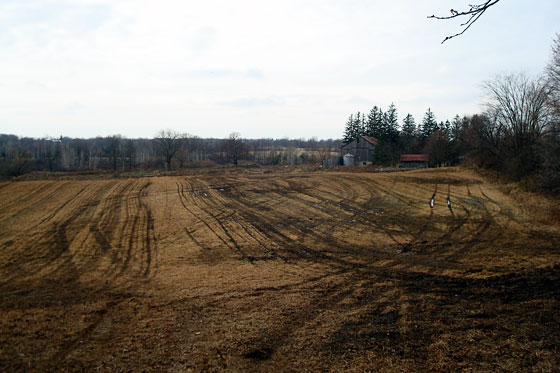 Field after spraying with manure