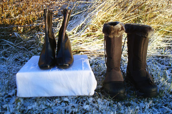 Dress boots and winter boots