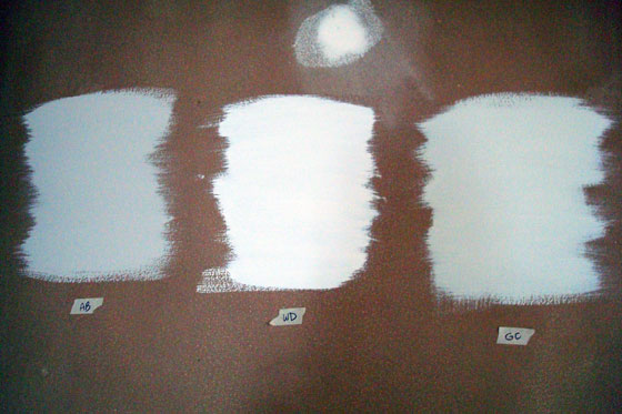 Benjamin Moore paint samples Abalone, White Dove and Grey Owl