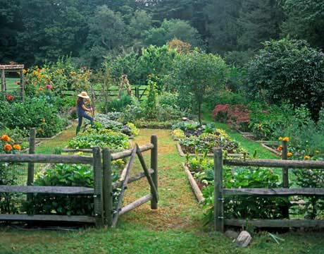 A beautiful country vegetable garden from Country Living
