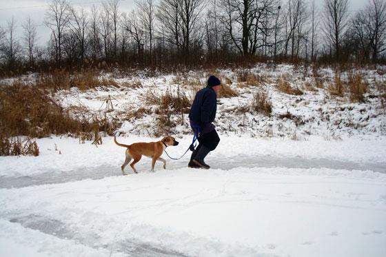 Baxter and Matt walking on the frozen pond