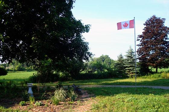 Canada flag flying over the farm