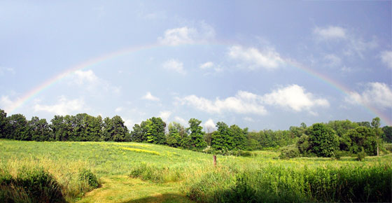 Rainbow over green fields