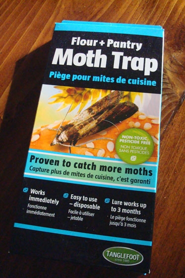 Flour and pantry moth trap by Tanglefoot