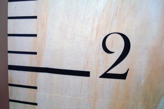 Detail of DIY ruler growth chart