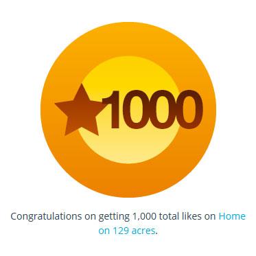 1,000th like