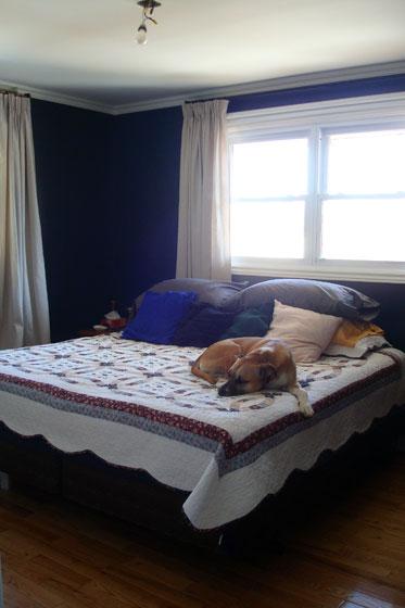 Master bedroom mid-makeover