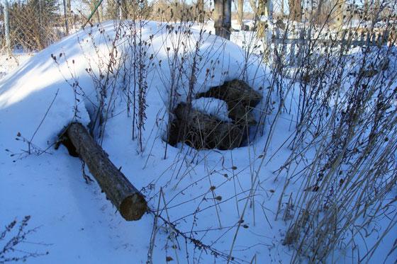 Wooden fenceposts under snow