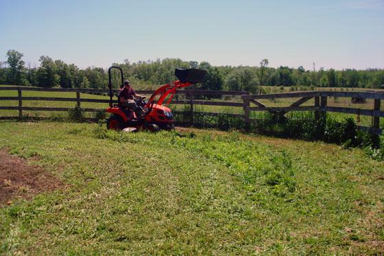 Mowing weeds in the garden