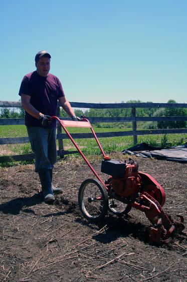 Matt tilling the garden