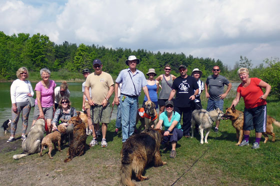 Dog hiking group