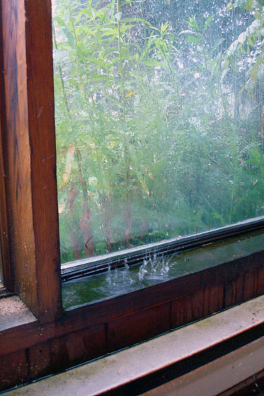 Rain dripping inside the sunroom