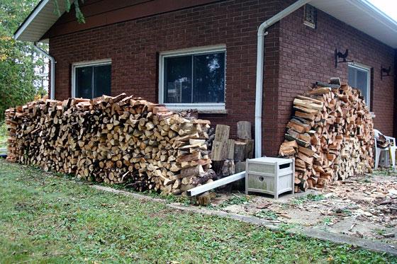 Firewood piles