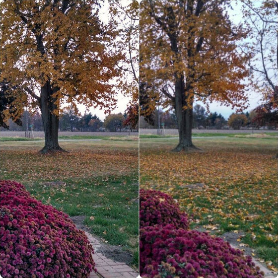 24 hours of fall
