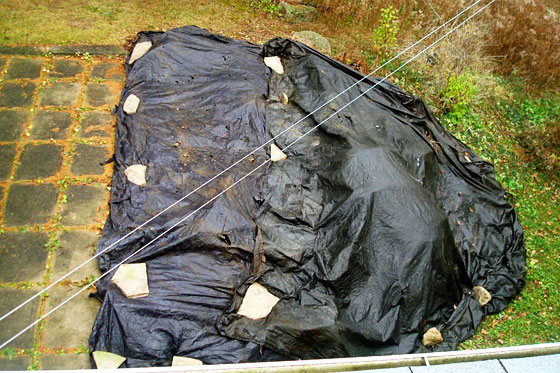 Tarp covering the backyard