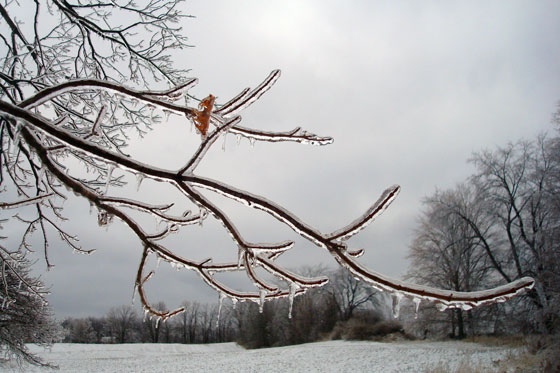 Spring ice storm