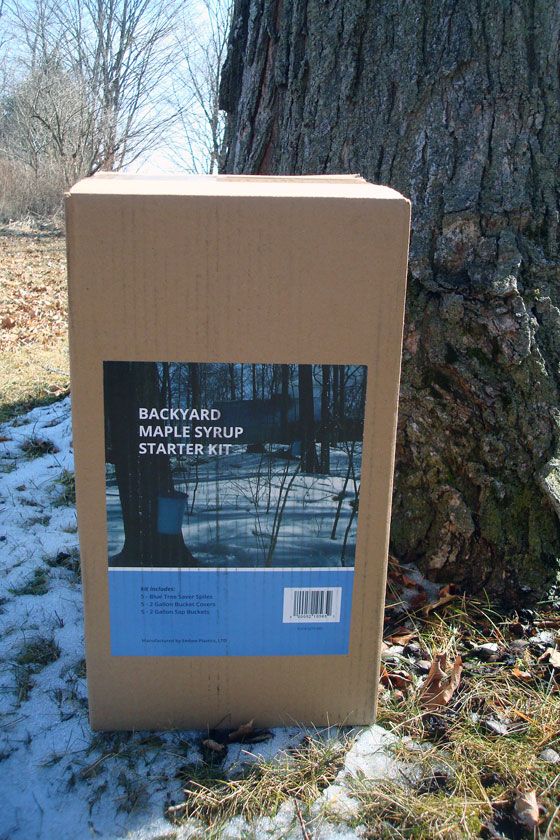 Backyard maple syrup kit