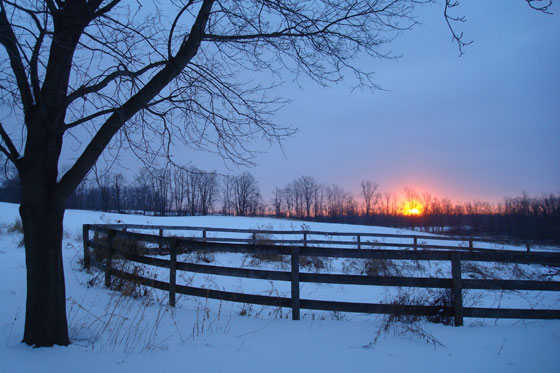 Sunrise over the farm