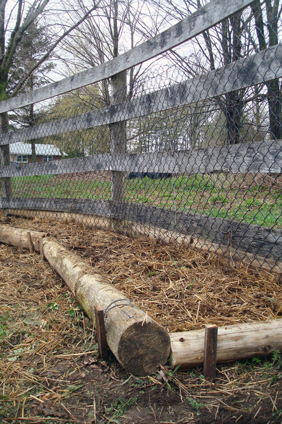 Shallow rustic raised vegetable garden beds
