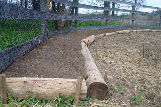 Raised garden bed made of logs