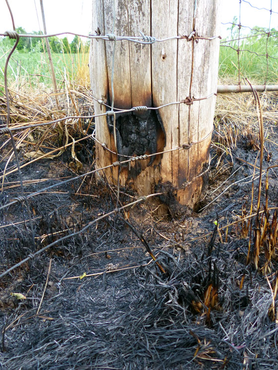 Burned fence post