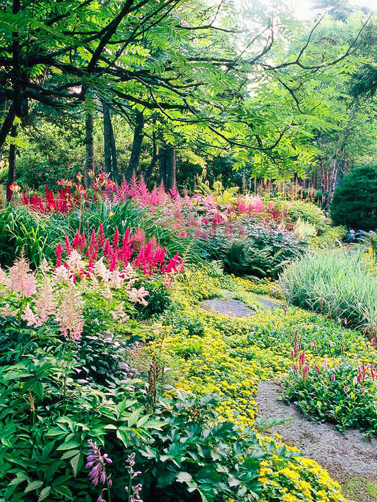 Colourful shade garden from Better Homes and Gardens