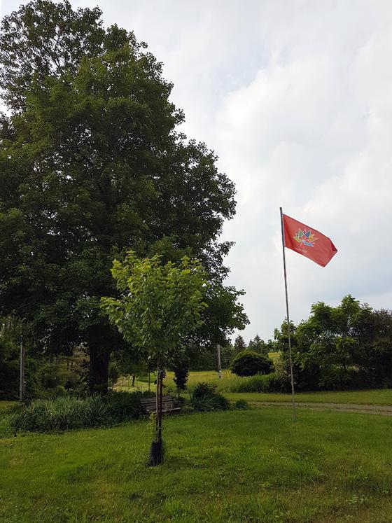Canada 150 flag