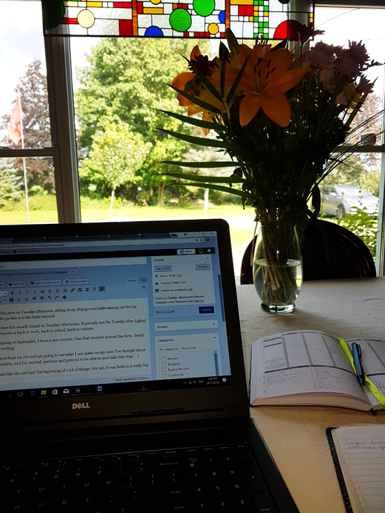 Writing at the dining room table