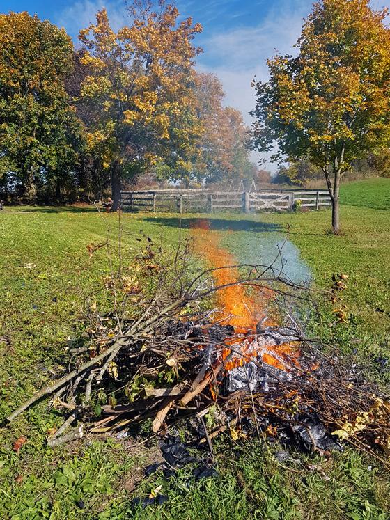 Burning brush at the farm