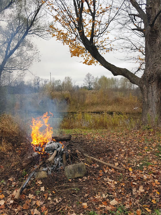 Fire on the shore of the pond