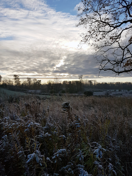 Frost covered fields at sunrise